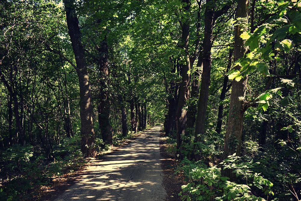 Abrahámsky park