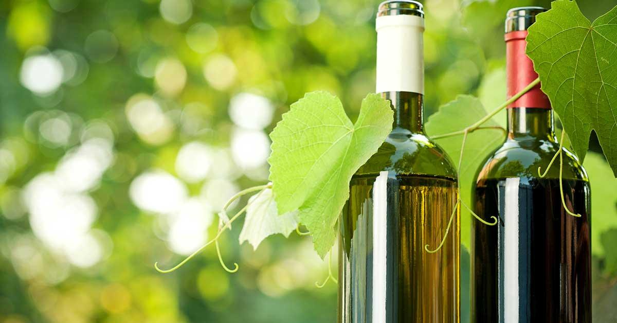 fľaše vína, vínna pivnica Abrahám