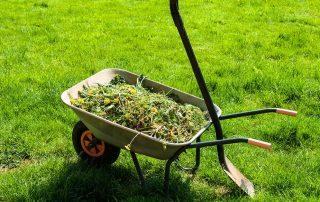 zelený odpad - biologicky rozložiteľný