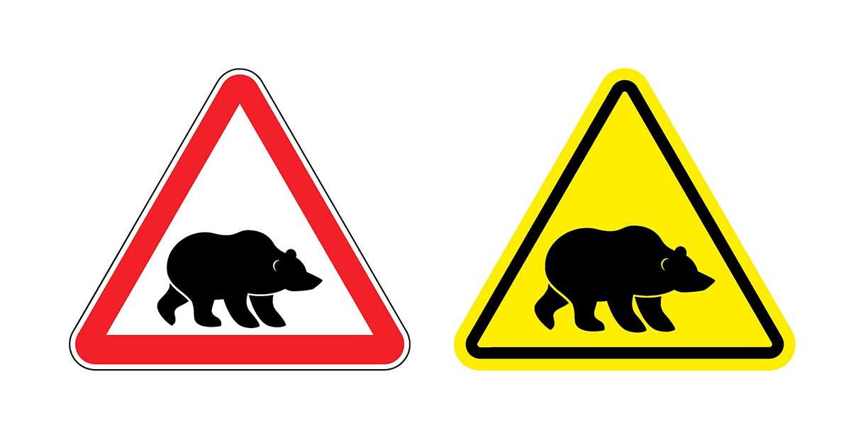 pozor medveď